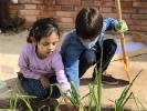 ¡Día de cebollas, Semana Santa y limpieza!_10