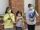 ¡Día de cebollas, Semana Santa y limpieza!_12
