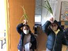 ¡Día de cebollas, Semana Santa y limpieza!_22