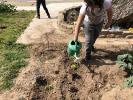 ¡Día de cebollas, Semana Santa y limpieza!_5