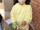 ¡Día de cebollas, Semana Santa y limpieza!_7