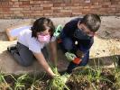 ¡Día de cebollas, Semana Santa y limpieza!_8